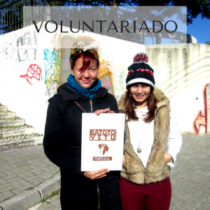 copy-of-voluntariado
